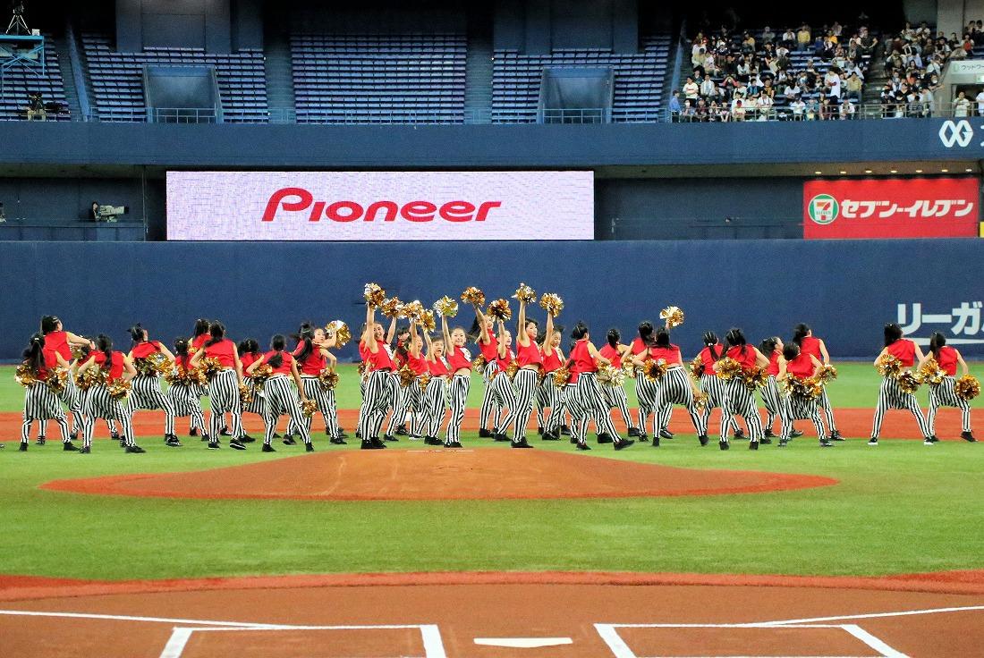 opening17sakura 82