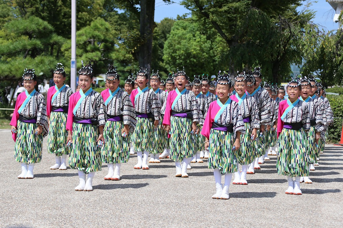 koiyaoosakajou17sakura 2