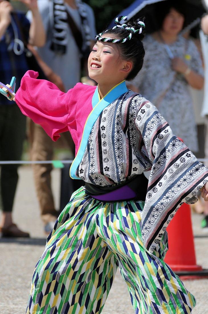 koiyaoosakajou17sakura 14