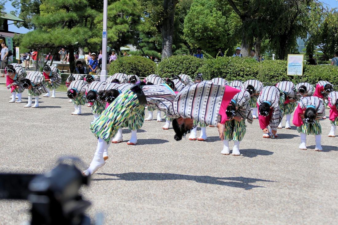 koiyaoosakajou17sakura 58