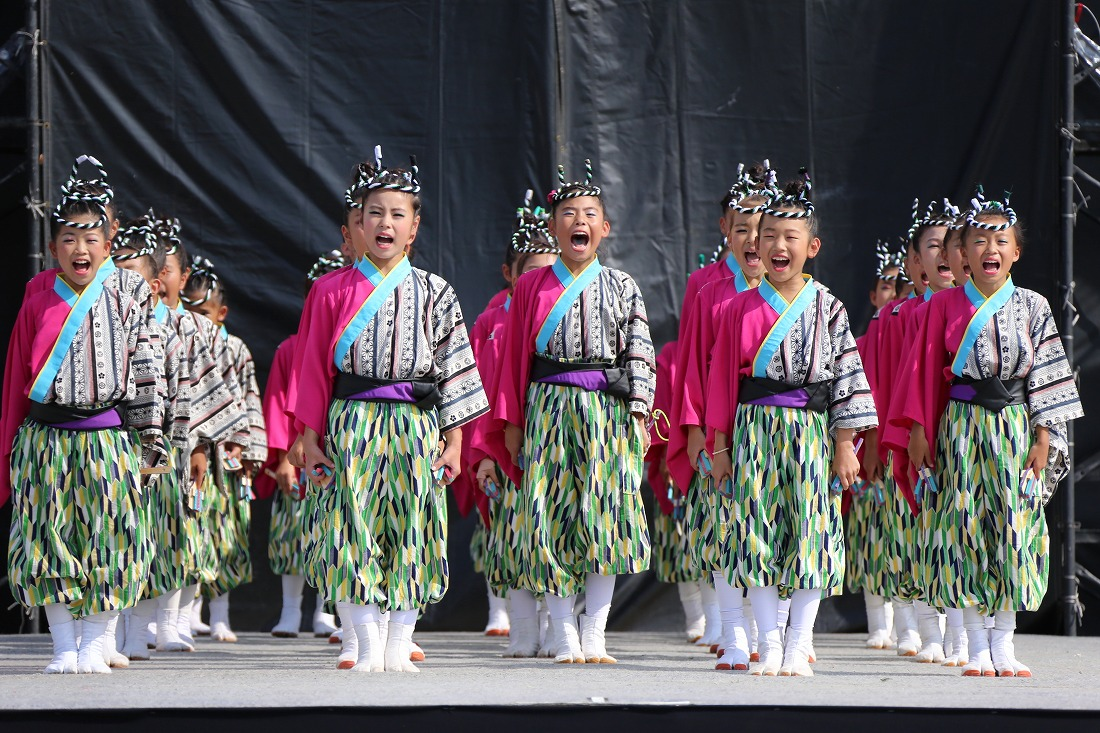 koiyamain17sakura 3