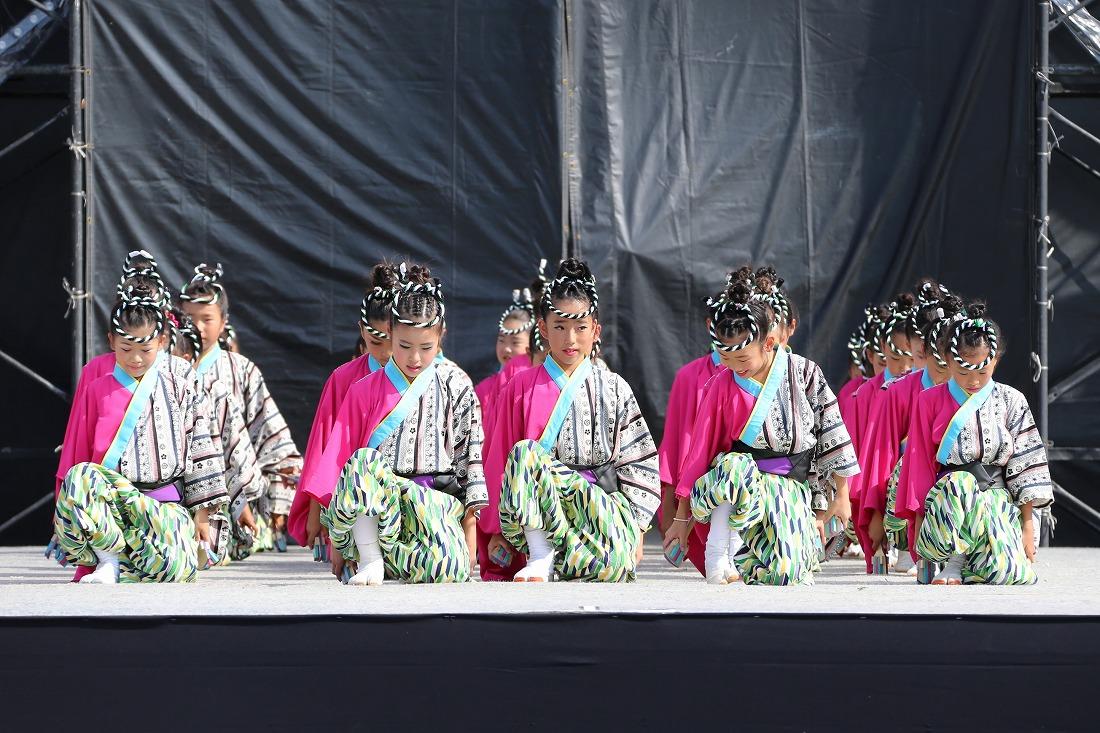 koiyamain17sakura 4