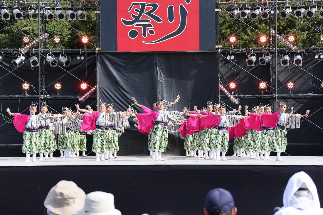 koiyamain17sakura 6