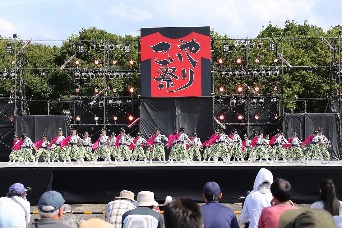 koiyamain17sakura 8
