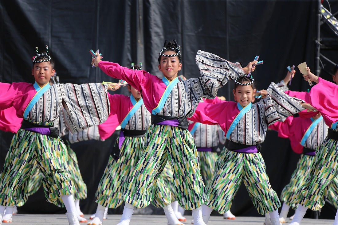 koiyamain17sakura 12