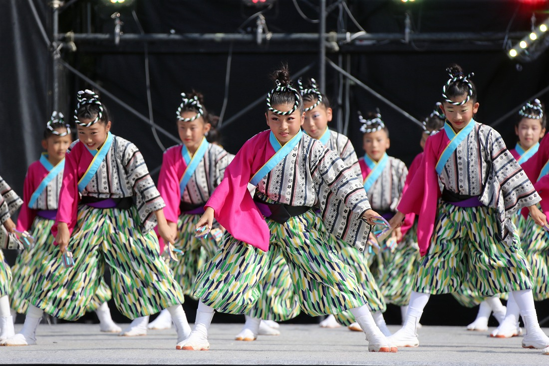 koiyamain17sakura 15