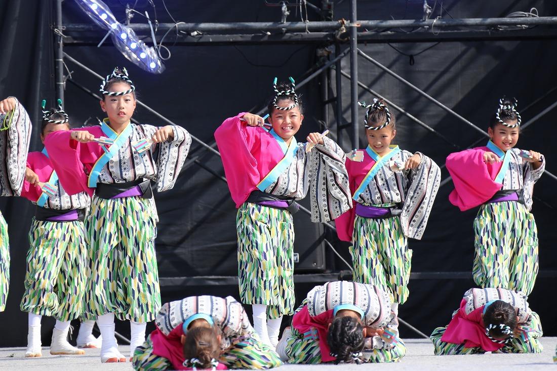 koiyamain17sakura 23