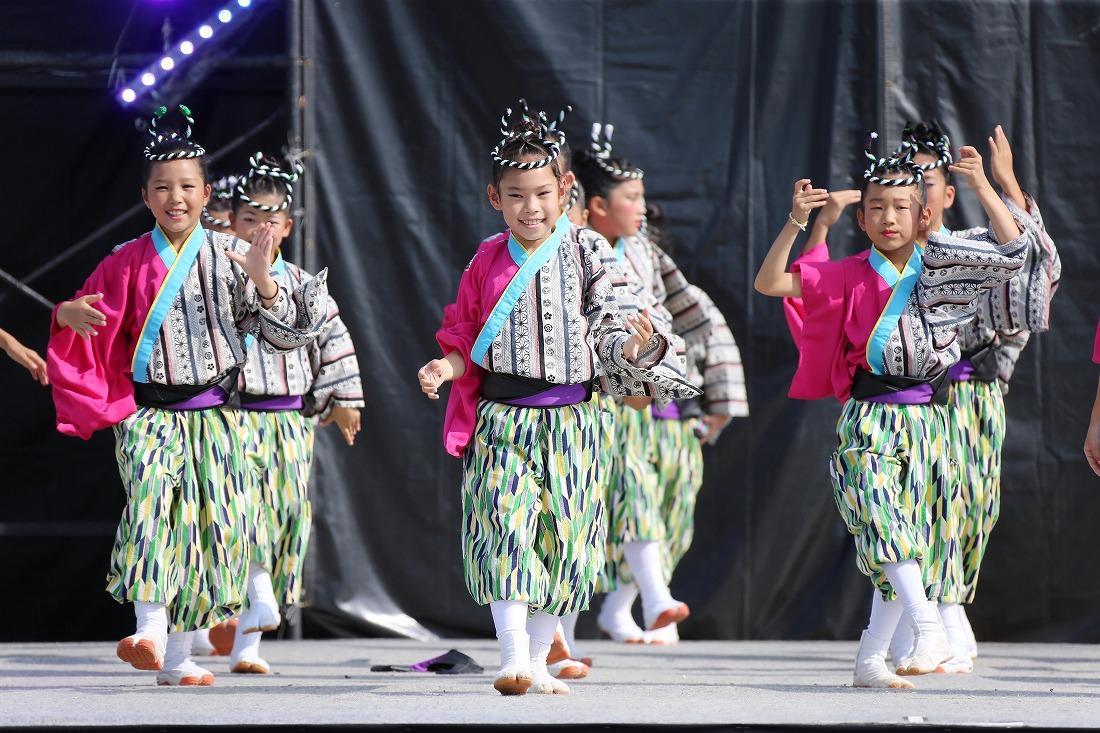 koiyamain17sakura 26