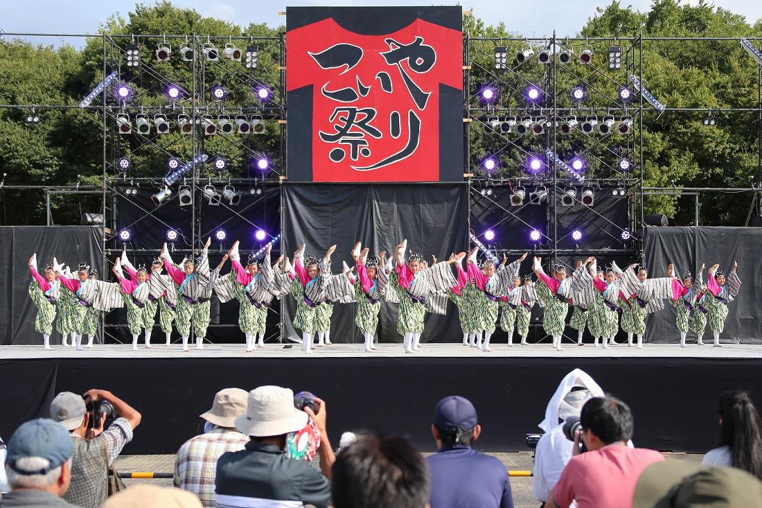 koiyamain17sakura 31