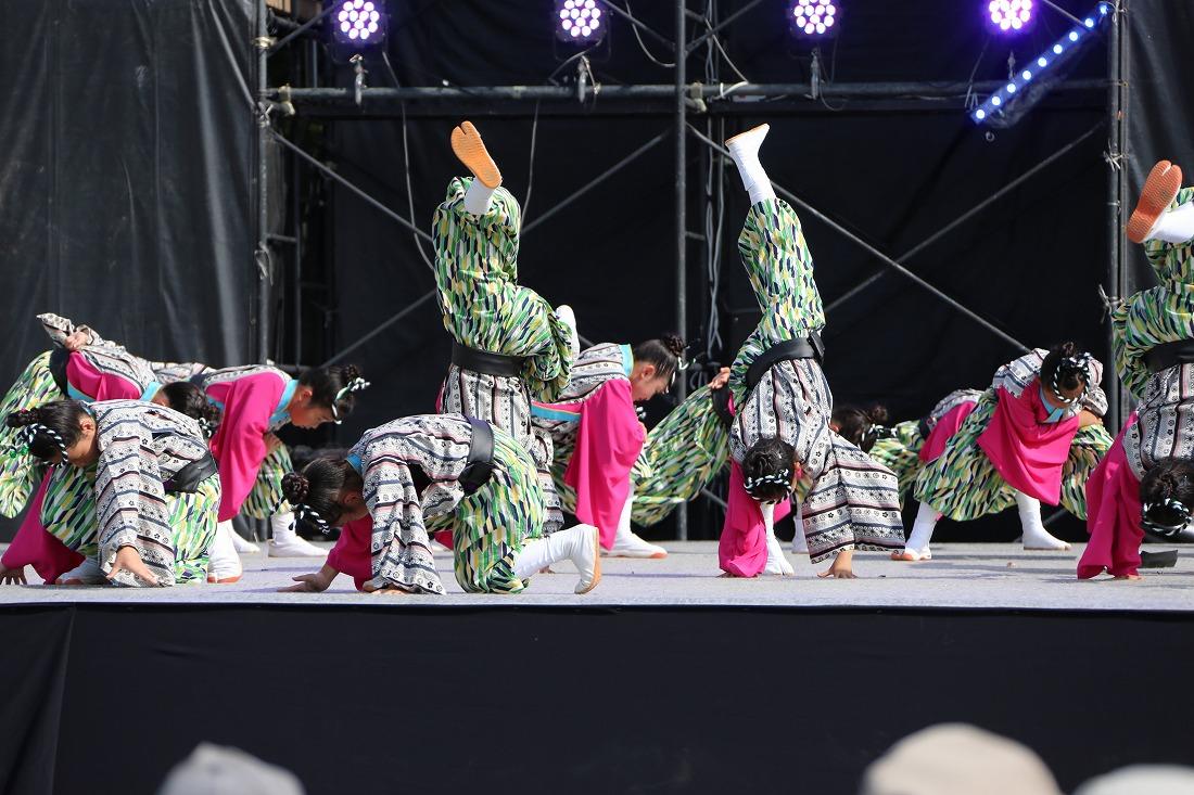 koiyamain17sakura 32