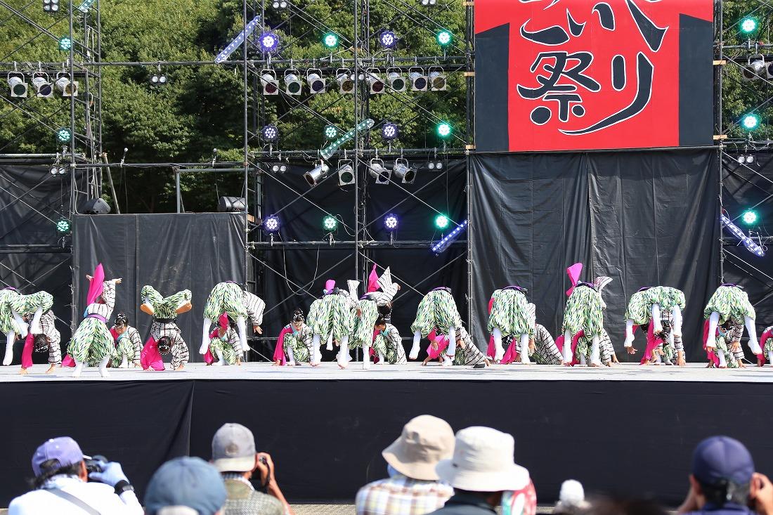 koiyamain17sakura 36
