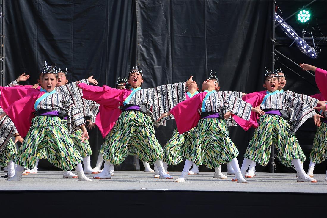 koiyamain17sakura 37