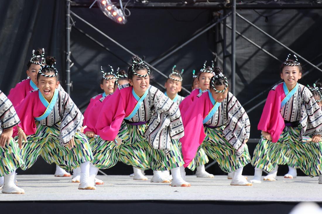 koiyamain17sakura 44