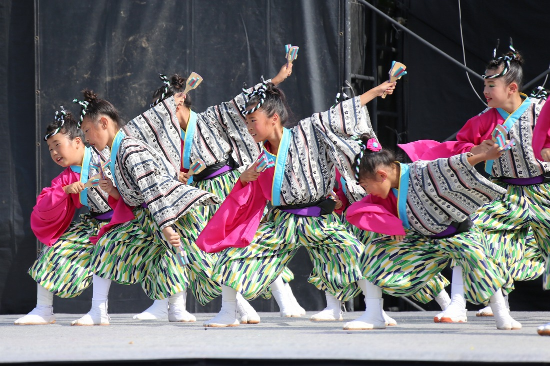 koiyamain17sakura 45