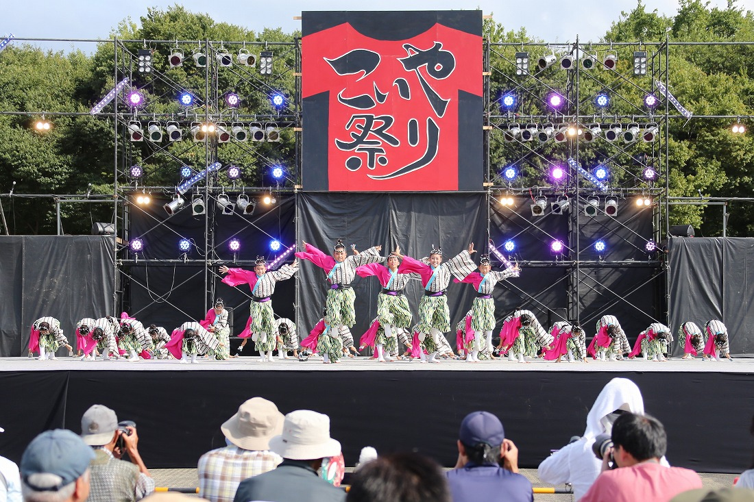koiyamain17sakura 49