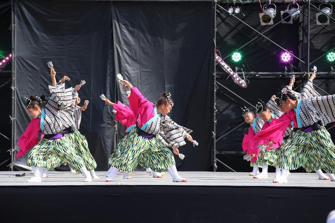 koiyamain17sakura 55