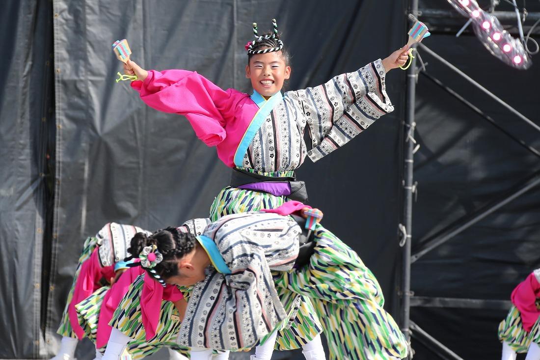 koiyamain17sakura 56