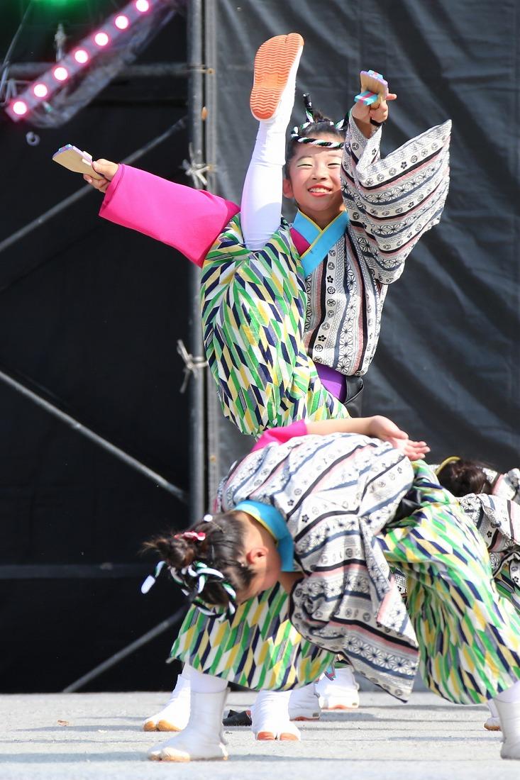 koiyamain17sakura 57