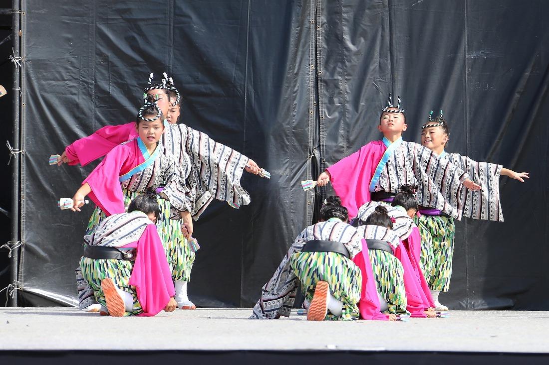 koiyamain17sakura 64