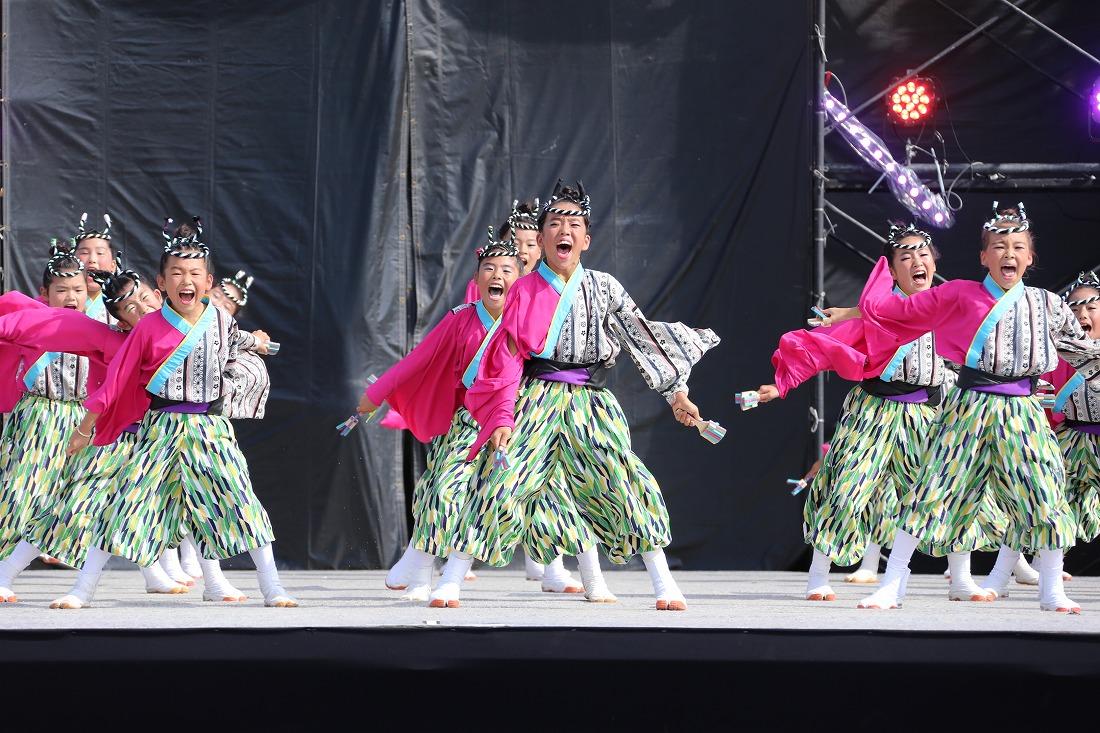 koiyamain17sakura 65