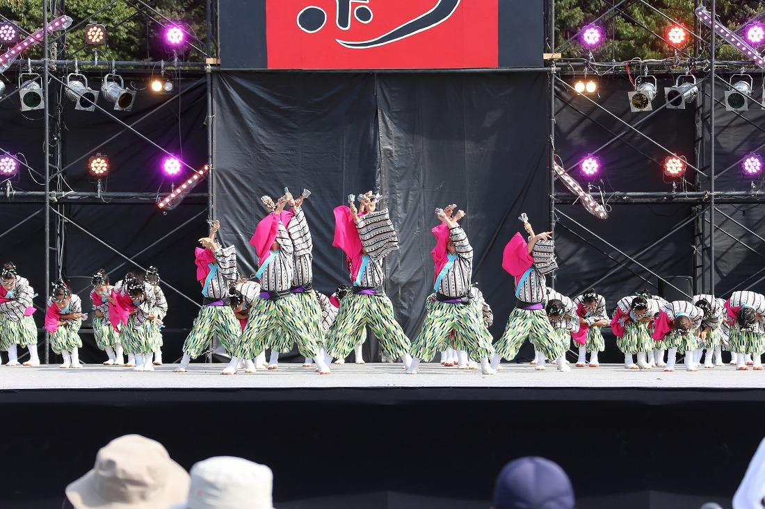 koiyamain17sakura 68