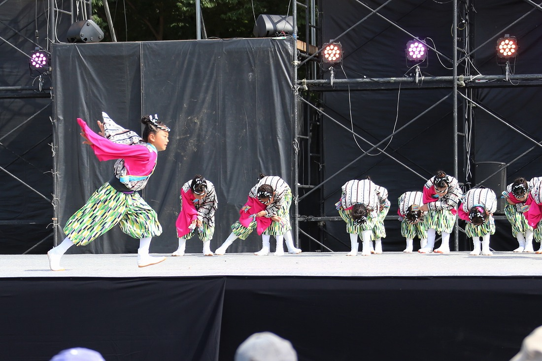 koiyamain17sakura 69