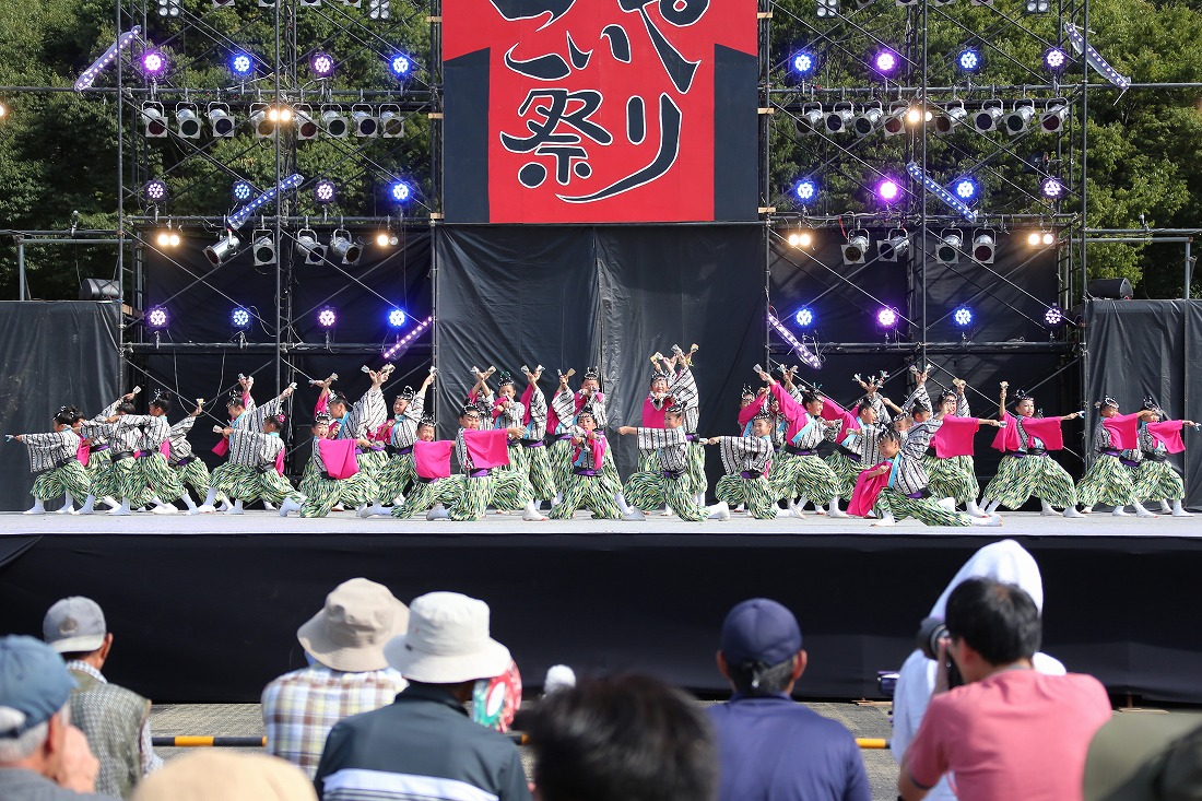 koiyamain17sakura 75
