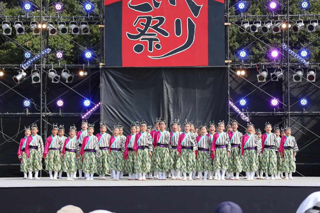 koiyamain17sakura 76
