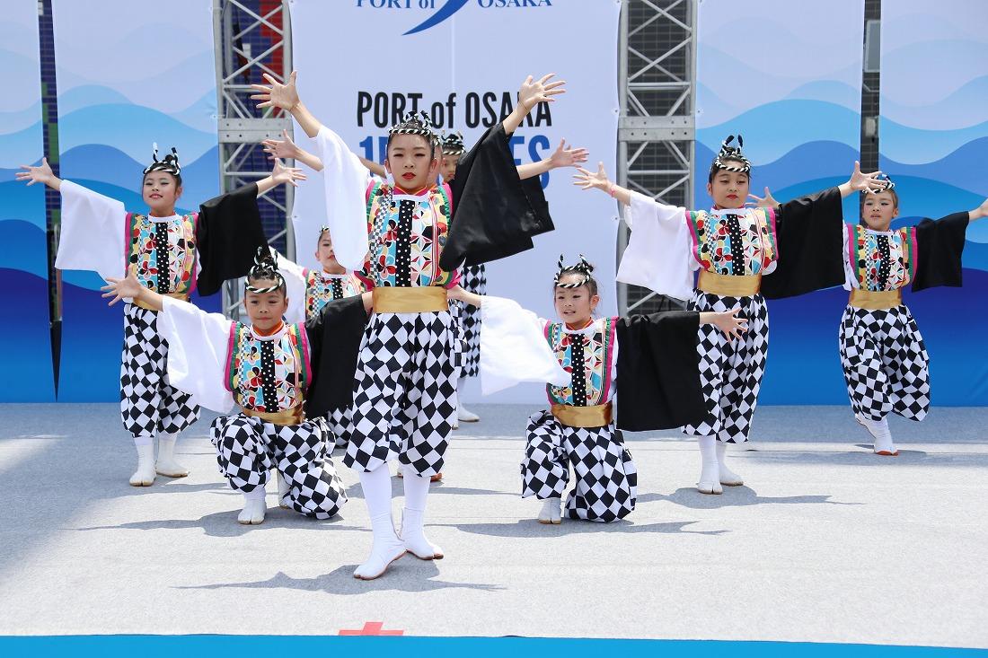 port17sakura 35