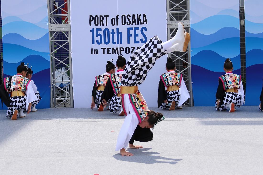port17sakura 55