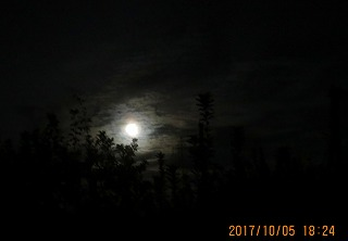 s-013_20171005205831a0d.jpg