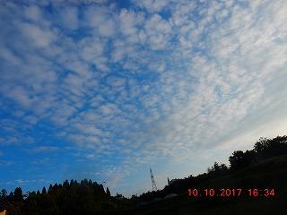 s-026_20171010195616ee6.jpg