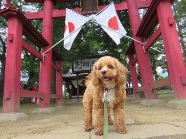 IMG_3073神社
