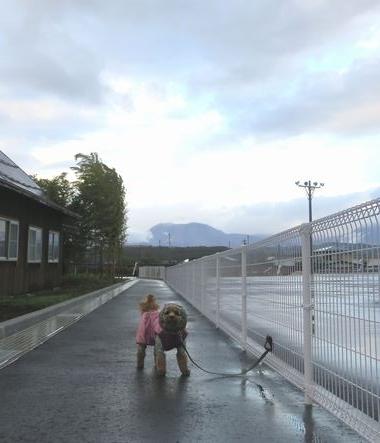 IMG_4633小雨散歩