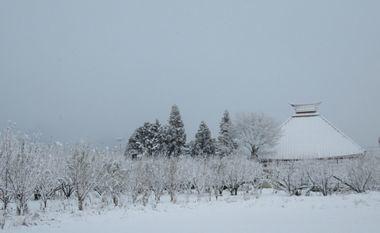IMG_5290雪景色