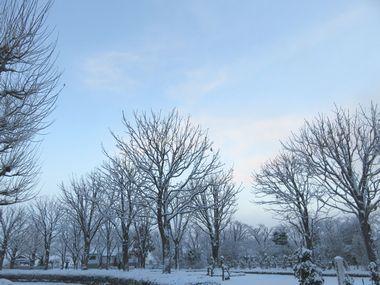 IMG_5563バラ公園