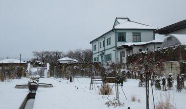 IMG_5669バラ公園