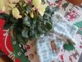 IMG_5794クリスマス