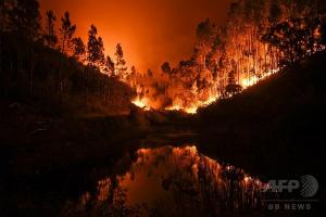 img_cd5f5e2ef90ポルトガルの森林火災