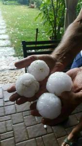 19420803_20320877非常に大きな雹