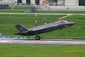 274f99dd1a9029F35が県内初飛来