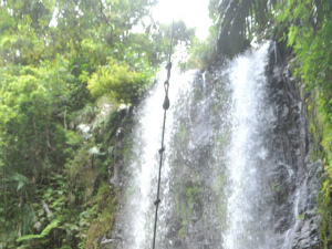 DK5IBJqUIAA30eP人気の滝で男性死亡