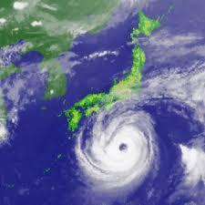 台風21号 暴風雨 災害 避難勧告 豊川 御津 花屋 花夢