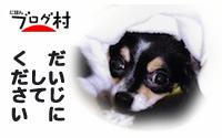 B-coo8.jpg