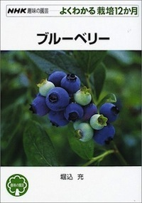 G-blueberry.jpg