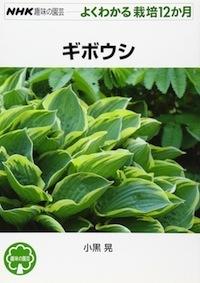 G-giboushi.jpg