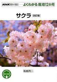 G-sakura.jpg
