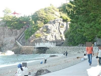 桂浜 (10)