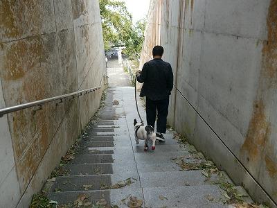 しまなみ海道 (12)