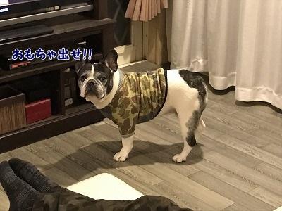 捕まる (1)